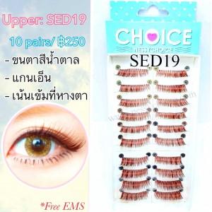 SED19