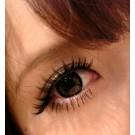 ขนตาปลอมบนแกนเอ็นรหัส SN05