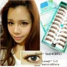 ขนตาปลอมบนแกนเอ็นสีน้ำตาลอ่อนรหัส SED14 (เบอร์ BR2)